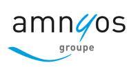 Logo Amnyos
