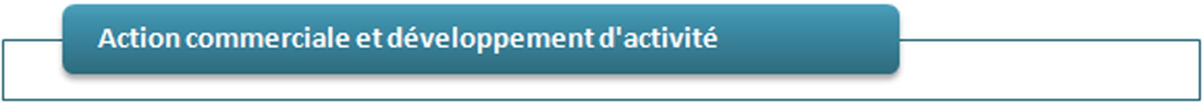 Action commerciale développement activité