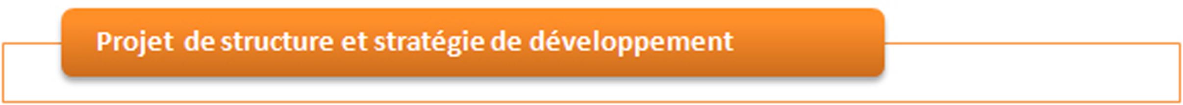 Projet associatif et stratégie de développement